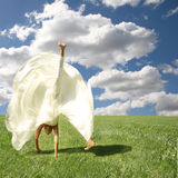 Somersault in the Outdoors. Bride Doing a Cartwheel on a Beautiful Summer Day Stock Photos