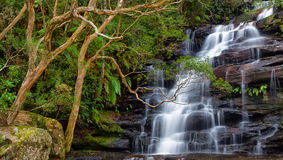 Somersby Falls in Australia. Somersby Falls - a beautiful waterfall on the NSW central coast, Australia Stock Photography