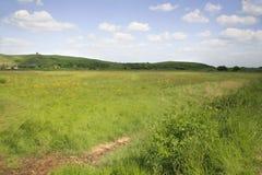 Somerset krajobraz Zdjęcia Royalty Free