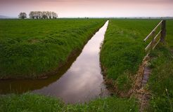 Somerset Levels in England. Evening scene Royalty Free Stock Photography