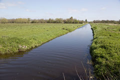 Somerset Levels Stock Image