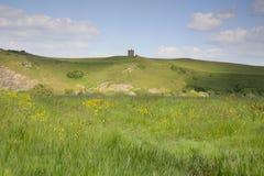 Somersetlandschap Stock Afbeeldingen