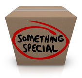 Something Special Cardboard Box Gift Delivery Unique Contents. Something Special words on a cardboard box to illustrate unique, uncommon or distinct contents, a Stock Photos