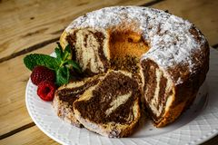 Easy Tasty Cake. Something to sweeten your day, made from eggs, flour, cocoa, sugar and a little of vanilla touch Stock Image