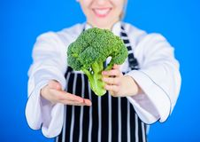Something truly natural. Organic green broccoli in female hands. Organic cabbage cooking recipe. Healthy choice of fresh royalty free stock photos