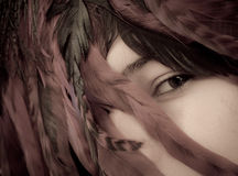 Something Wild In Her Eyes. Girls Pretty Eyes Behind Feathers stock photos