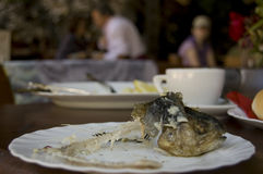 Sometime it was a trout. Eaten trout in Slovenian restaurant stock photography