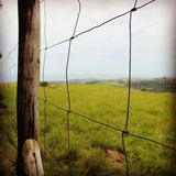 Sometimes the grass is greener on the other side. A fence close to the edge of the umthamvuna gorge in KwaZulu-Natal Stock Photography