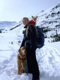 Sometimes the snow is too deep!. Sometimes even the most intrepid dog just ends up out of their depth and needs a little help. Stepping off the Plain of Six Royalty Free Stock Photo