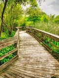 A wooden footpath for walking around the garden. Sometimes you need to get out and have a great walk in a natural environment royalty free stock image