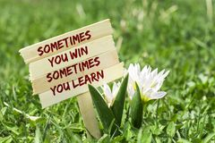 Sometimes you win. You learn on wooden sign in garden with spring flower royalty free stock photography