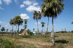 Somewhere in Cuba. Farmer house in Cuba countryside Stock Images