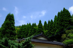 Somewhere in Japan. With a sky and tree Stock Image