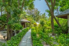 Somewhere in the Maldives. Garden in small island somewhere in the Maldives royalty free stock photography