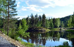 Somewhere in Norway... Beautifull lake in the forest Stock Photos