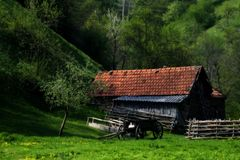 Somewhere in the spring. One isolated peasant house near a romanian village called Poiana stock image