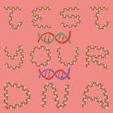 Somil ДНК иллюстрация вектора