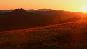 Sommaräng av nordliga Kalifornien, Förenta staterna stock video