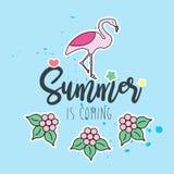 Sommar är den kommande designen med flamingo arkivbild
