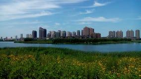Sommar av Pu-floden royaltyfria foton