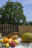 Sommar bär frukt i en tabell Royaltyfri Bild