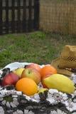 Sommar bär frukt utomhus Arkivfoton