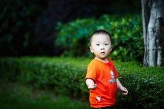 Sommar behandla som ett barn pojken royaltyfria bilder