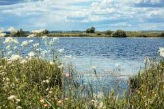 Sommar blå sjö Royaltyfria Foton