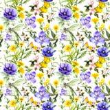 Sommar blommar, änggräs, vårörter naturligt seamless för bakgrund Vattenfärg i blåttfärg vektor illustrationer