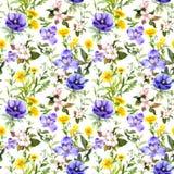Sommar blommar, änggräs, vårörter naturligt seamless för bakgrund Vattenfärg i blåttfärg stock illustrationer