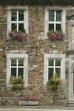 Sommar blommar i balkongaskar Royaltyfria Bilder