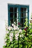 Sommar blommar på ett fönster Arkivfoton