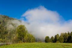 Sommar dimma på floden altaidagar sist bergsommar Royaltyfria Foton
