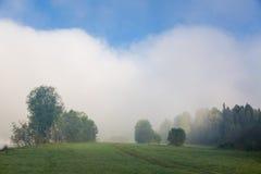 Sommar dimma på floden altaidagar sist bergsommar Arkivbild