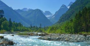sommar för bergnaturserie Arkivfoto