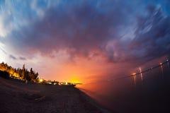 sommar för blom- natt för bakgrundsdesign din seamless Royaltyfri Fotografi