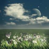 sommar för blom- natt för bakgrundsdesign din seamless Arkivbilder