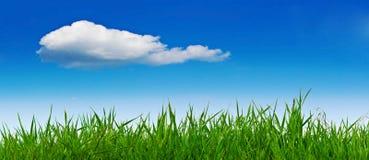 sommar för gräsliggandesky Fotografering för Bildbyråer