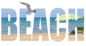 sommar för snäckskal för sand för bakgrundsbegreppsram Royaltyfri Bild
