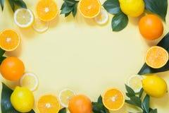sommar för snäckskal för sand för bakgrundsbegreppsram Uppsättning av tropiska frukter, citron, apelsin och gräsplansidor på guli royaltyfria bilder