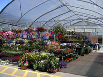sommar för stall för blommamarknad öppen Fotografering för Bildbyråer