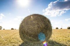 sommar för sugrör för äng för hö för balbalfält Royaltyfria Foton