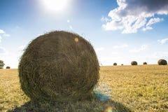 sommar för sugrör för äng för hö för balbalfält Royaltyfri Foto