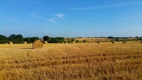 Sommar Hay Fields Arkivbilder