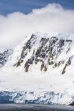 Sommar i Antarktis Royaltyfri Fotografi