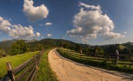 Sommar i bergen Royaltyfria Bilder