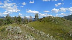 _ Sommar i bergen Arkivfoto