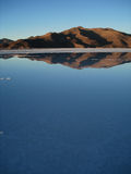Sommar i den Atacama öknen Royaltyfri Foto