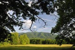 Sommar i den Cades lilla viken av Great Smoky Mountains, Tennessee, USA Fotografering för Bildbyråer