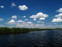 Sommar i den Danube deltan Fotografering för Bildbyråer